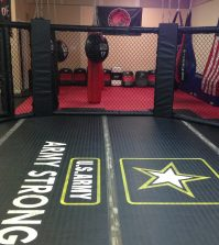 Get Started in MMA_Cage